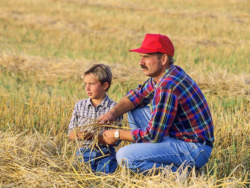 Father and son farmers planning for the future